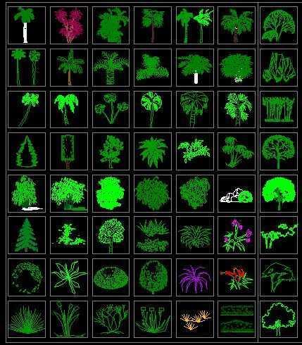 cad画电气图纸_CAD常用植物图例免费下载 - 建筑详图、图库 - 土木工程网