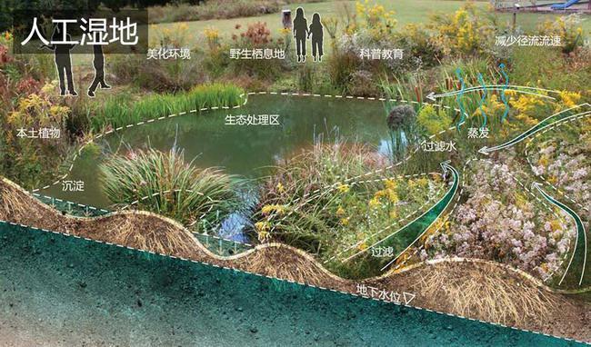 城市园林绿地设计手绘