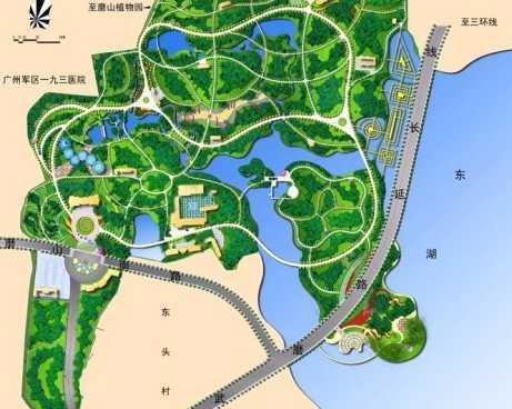 园林常用植物彩绘平面图;