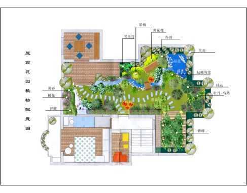 屋顶花园植物配置彩平图纸