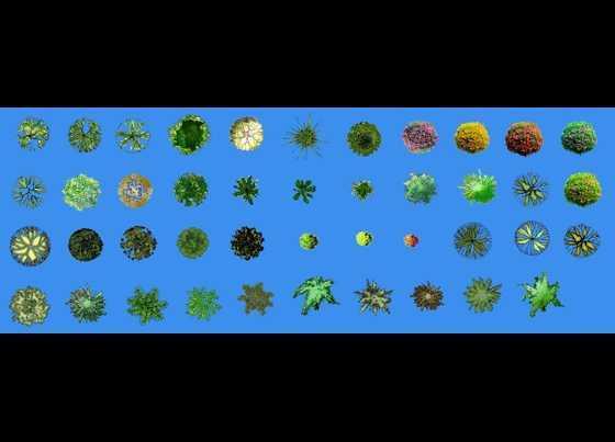 景观平面图例免费下载