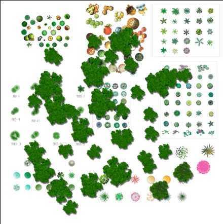 园林树木平面集合psd