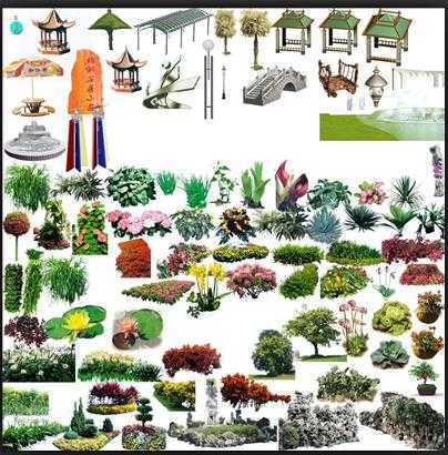 ps植物平面图例集合免费下载