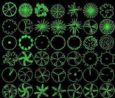 植物图例免费下载 - 园林景观素材