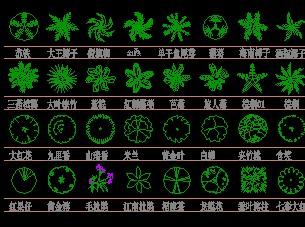 cad棕榈灌木图例免费下载图片