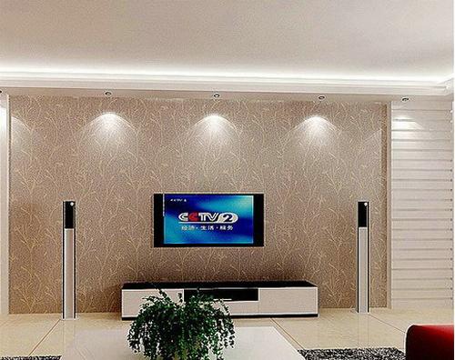 欧式客厅电视背景墙 干净素雅的它